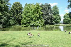 Im Park von Schloss Favorite, Rastatt, Baden Württemberg, Deutschland